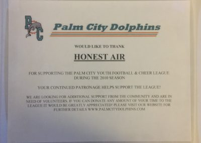 Palm City Dolphins 2010