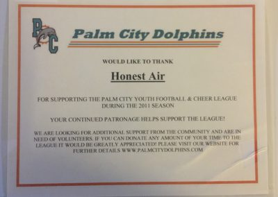 Palm City Dolphins 2011